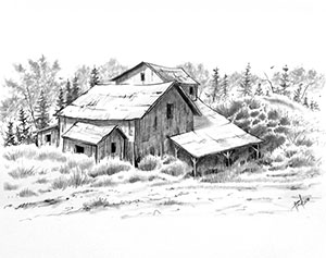 Drawings by Fred Paulson